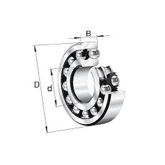 Nsk 2205K-2Rstn Double Row Self Aligning Ball Bearing