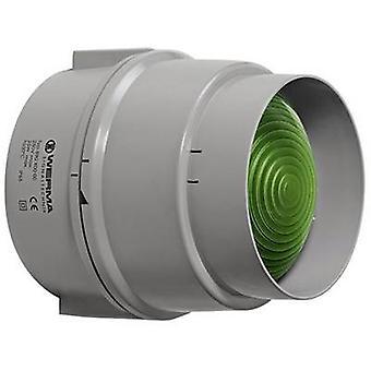 Light Werma Signaltechnik 890.200.00 Green Non-stop light signal 12 V AC, 12 Vdc, 24 V AC, 24 Vdc, 48 V AC, 48 Vdc, 110 V AC, 230 V AC