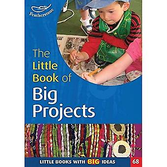 The Little Book of Big Projects: Little Books with Big Ideas