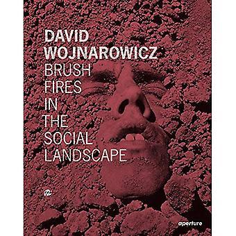 David Wojnarowicz: Brush Fires in the Social Landscape
