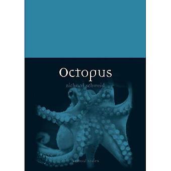 Octopus (Animal)