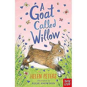 Une chèvre appelée Willow