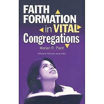 Faith Formation in Vital Congregations (Congregational Vitality)