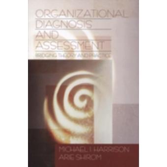 Evaluación de diagnóstico organizacional tendiendo un puente sobre teoría y práctica por Harrison y Michael