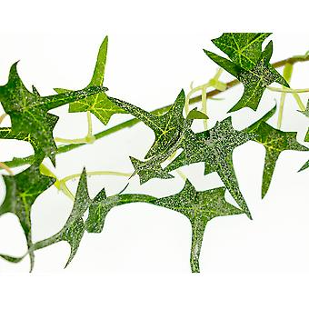 SALE - Skinny 160cm Frosted Mini Ivy Garland for Floristry Crafts - Artificial Foliage