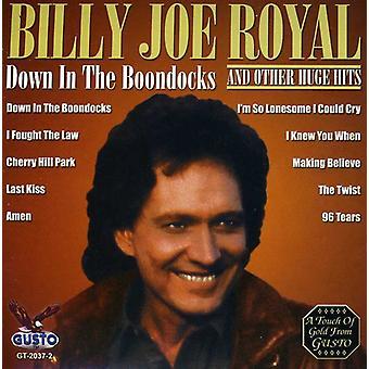 Billy Joe Royal - Down in the Boondocks [CD] USA import