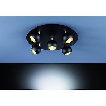 Trio Lighting Dakota Modern Black Matt Metal Ceiling Lamp