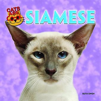 Siamois (chats sont Cool (Powerkids))