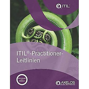 ITIL Practitioner-leitlinien (German edition of ITIL Practitioner Guidance)