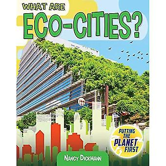 What are Eco-Cities? (Putting the Planet First)