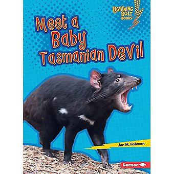 Meet a Baby Tasmanian Devil (Lightning Bolt Books� Baby Australian Animals)