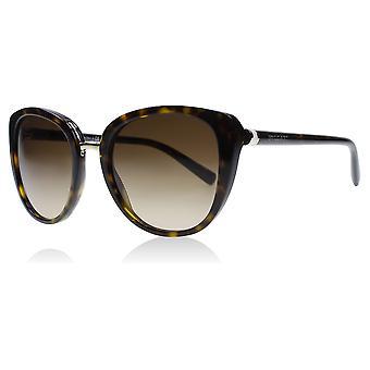 Bvlgari BV8177 504-13 Dark Havana BV8177 Cats Eyes Sunglasses Lens Category 3 Size 53mm