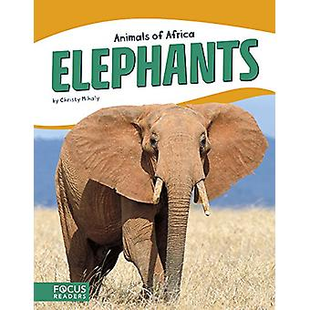 Elephants by Christy Mihaly - 9781635172614 Book