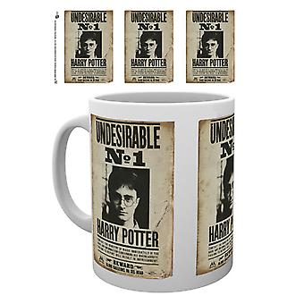 Harry Potter Undesirable Boxed Drinking Mug