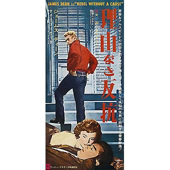 Rebel Without a Cause Movie Poster (11 x 17)