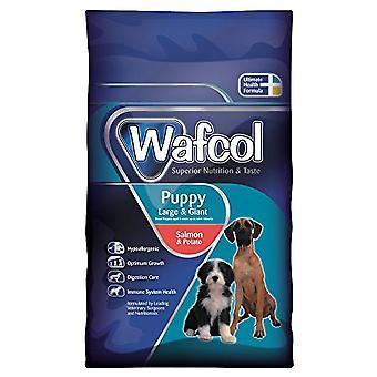 Wafcol hvalp laks og Potato store/gigant racen 2,5 kg