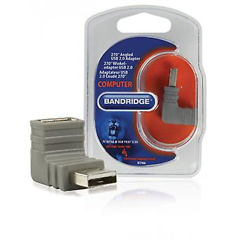 Bandridge 270 ° angled USB 2.0 adapter