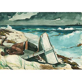 Winslow Homer - na de orkaan Bahama's Poster Print Giclee