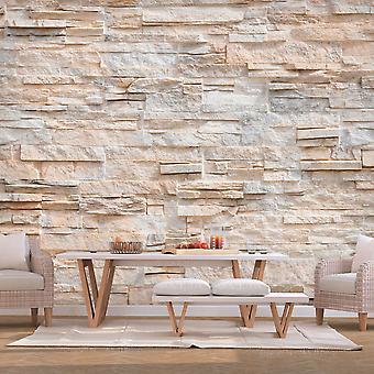 Wallpaper - Stony Gracefulness