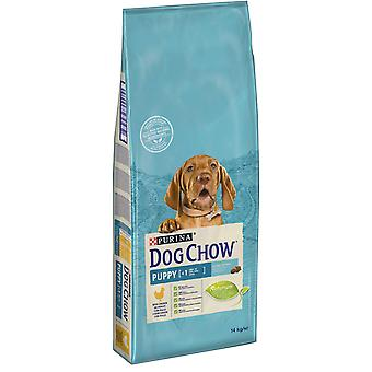 Dog Chow Puppy with Chicken (Dogs , Dog Food , Dry Food)