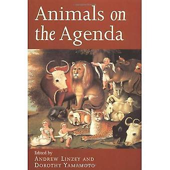Animali all'ordine del giorno: domande su animali per la teologia ed etica