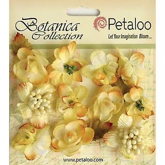 Botanica Minis 11 Pkg Soft Yellow P1101 103