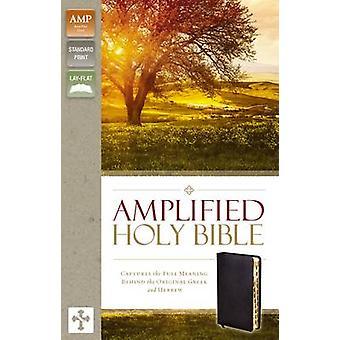 Forsterket - Bibelen - fanger den fulle meningen bak opprinnelige
