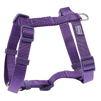 Freedog Harness Nylon Basic Purple (Dogs , Collars, Leads and Harnesses , Harnesses)