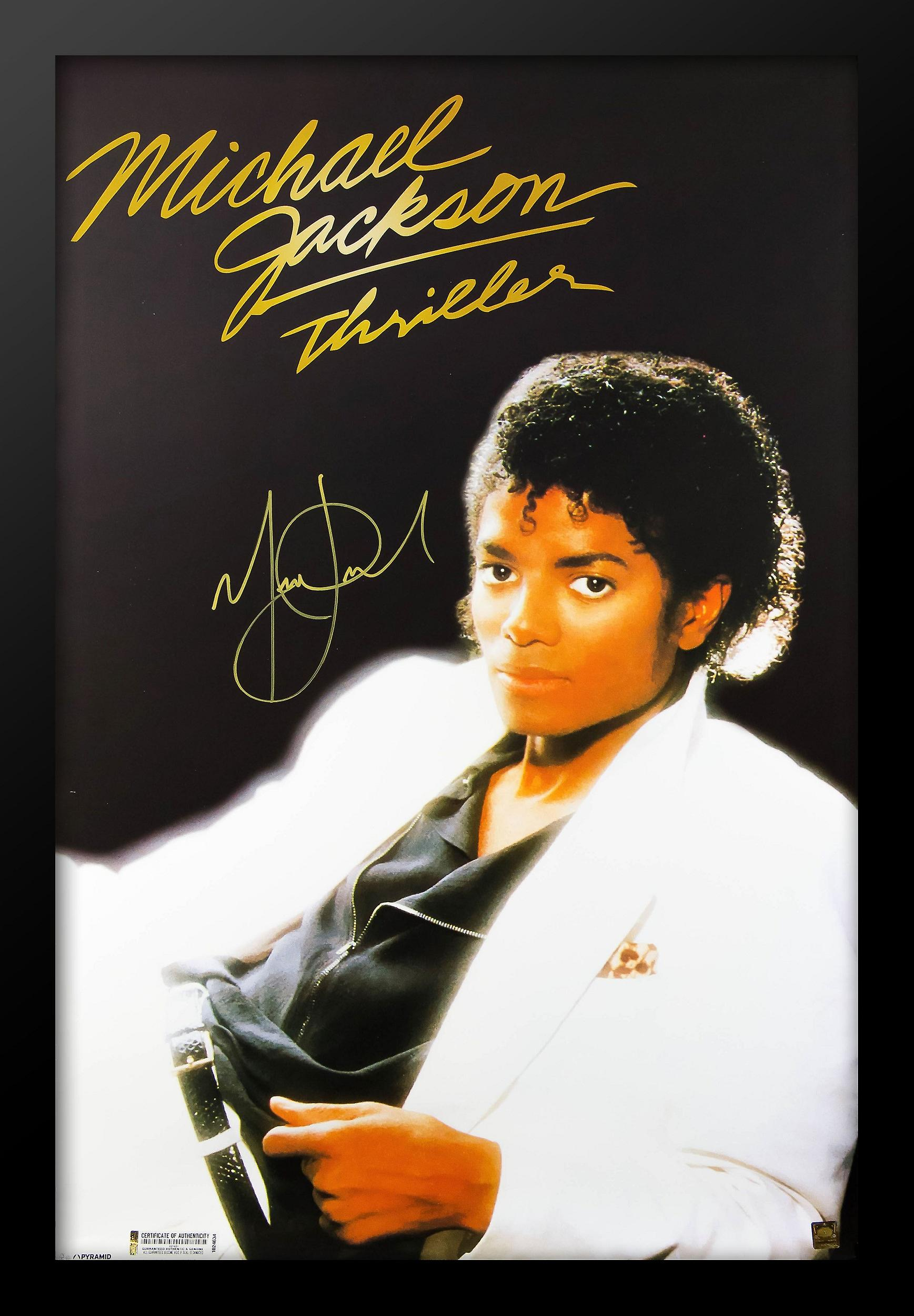 Michael Jackson-Thrillers Perfect Storm