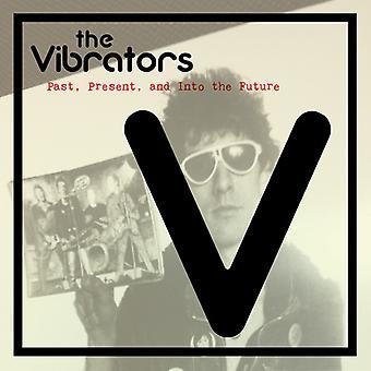 Vibrators - verleden heden en in de toekomst [Vinyl] USA import