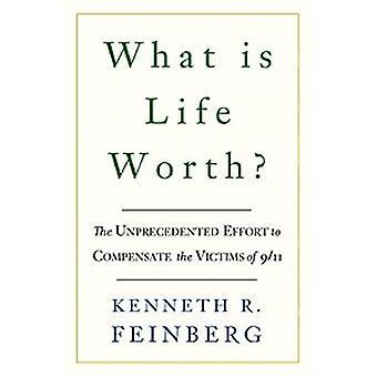 Was ist das Leben Wert? -Die innere Geschichte der 9/11-Fonds und ihre Mühe