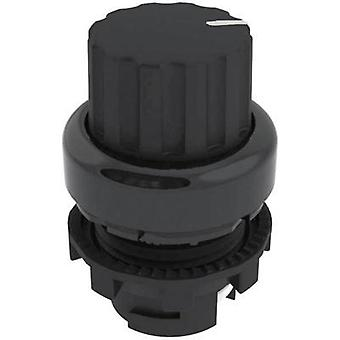Option key Black 1 x 45 ° Pizzato Elettrica E21SE42ACA11AB 1 pc(s)