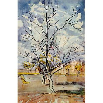 Vincent Van Gogh - Pink Peach Trees, 1888 Poster Print Giclee