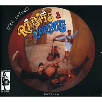 Kaniner & gulerødder - sjæl Latino [CD] USA import