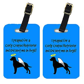 Carolines Treasures  AN1023BT Pair of 2 Curly Coated Retriever Luggage Tags