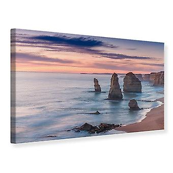 Canvas Print Rocks Into The Surf