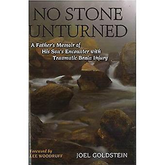 Ingen sten ovänd: En fars memoarer om sin sons möte med traumatisk hjärnskada
