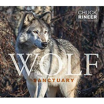Wolf Sanctuary: The Wolves of Speedwell Forge