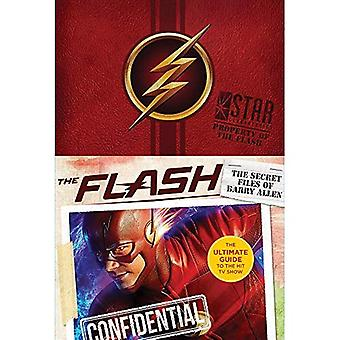 The Flash: Ultimate Guidebook (Flash)