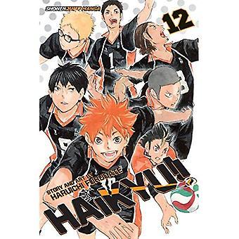 Haikyu!!, Vol. 12 (Haikyu!!)