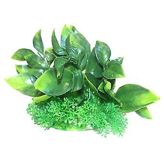 Betta wählt grünen Zwergkunststoff