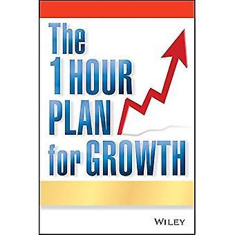 1 timme planen för tillväxt: hur en enda pappersark kan ta din verksamhet till nästa nivå