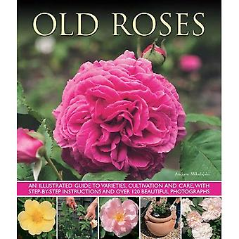 Old Roses: An Illustrated Guide To Varieties, Cultivation And Care, With Step-By-Step Instructions And Over 120...
