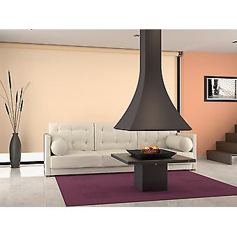 Focgrup suspended central fireplace (Home , Air-conditioning and heating , Chimneys)