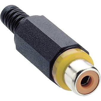 RCA connector Socket, straight Number of pins: 2 Yellow Lumberg XKTO 1 1 pc(s)
