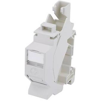 Network outlet DIN rail CAT 6A Telegärtner H02000A0086 Light grey