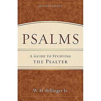 Psalms: A Guide to Studying the Psalter