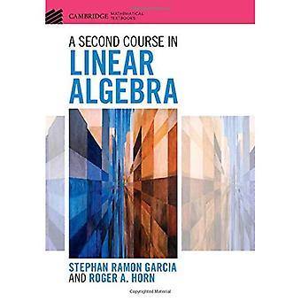 Drugi kurs w algebrze liniowej (Cambridge Mathematical podręczników)