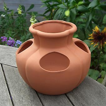 Terracotta Planter - Strawberry Herb Planter