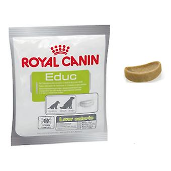 Royal Canin Educ (hundar, behandlar, lättare alternativ)
